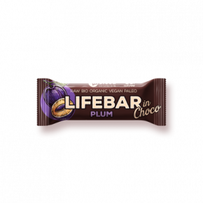 Raw Organic Lifebar InChoco Plum