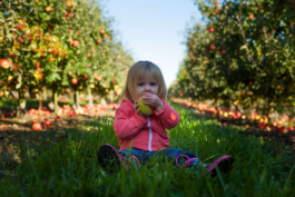 7 tips on how to teach kids to love clean and pure flavours