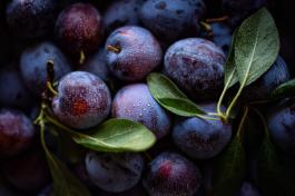Plum - A delicious fruit